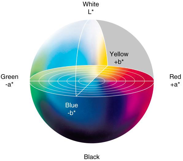 Distribution of color